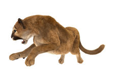 puma de grand chat illustration de vecteur
