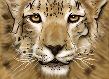 Puma del gráfico Imágenes de archivo libres de regalías
