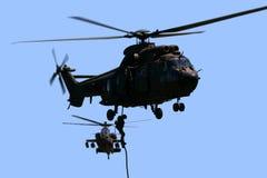 Puma et Apache Image libre de droits