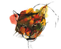 Puma. Head of puma/cougar/mountain lion, black and gold drawing on a yellow orange and green watercolor splash background Stock Photos