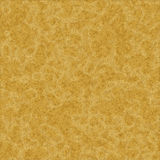 Puma or lion fur texture. Puma or lion yellow hairy fur texture Royalty Free Stock Images