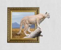 Puma nel telaio con effetto 3d Fotografia Stock