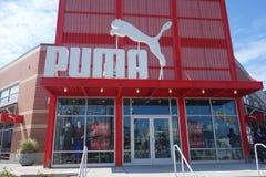 Puma sklep Obraz Royalty Free