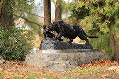 Puma y bebé en mi parque del otoño foto de archivo libre de regalías