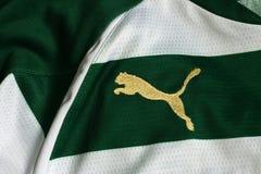 Puma znak Fotografia Royalty Free