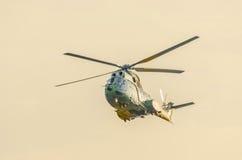 Pumahubschrauber steuert Training im Himmel, Sonnenuntergangzeit Stockfoto