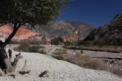 pumamarca River Valley Стоковое Изображение RF