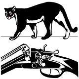 Pumapuma Amerikanerberglöwe des Jagdgewehrs wilder Lizenzfreies Stockbild