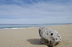 Pumice on Beach Royalty Free Stock Photos
