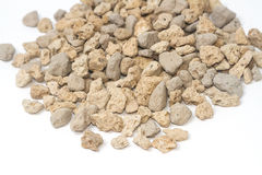 Pumice pebbles for gardening Stock Photos