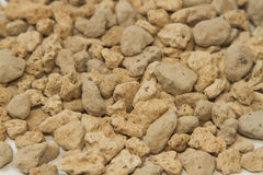 Pumice pebbles ( lightweight volcanic rock ) Royalty Free Stock Image