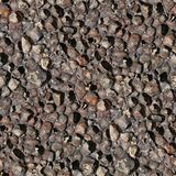Pumice photographic seamless pattern texture Stock Images