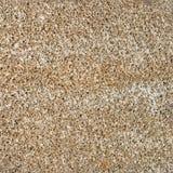 Pumice porous stone or Armenian texture background Stock Image