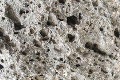 Pumice Rough Textured Rock Surface Stock Photos