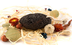 Pumice-stone with herbals Royalty Free Stock Photo