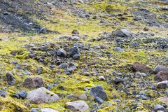 Pumice stones along bed of Solheimajokull glacier Royalty Free Stock Photos