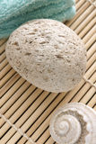 Pumice Stock Photos