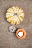 thanksgiving, autumn border. Pumkin Stock Photography