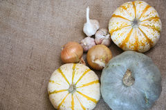 Thanksgiving, autumn border Royalty Free Stock Images