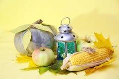 Pumkin, corn Royalty Free Stock Photo