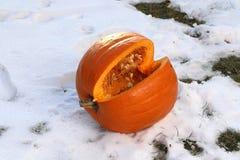 Pumkin. / Cut pumpkin lying in the snow stock photography