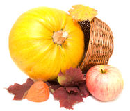 Pumkin, fall leaves and apple  Stock Photos