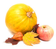 Pumkin, fall leaves and apple  Royalty Free Stock Photography