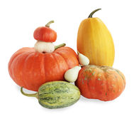 Pumkin family. Isolated against the white background Stock Photo