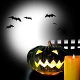 Pumkin for Halloween Royalty Free Stock Photo