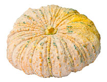 Pumkin Stock Photos