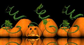 Pumkin jack-o-lantern Royalty Free Stock Images