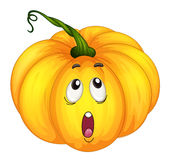 Pumkin looking up Royalty Free Stock Images