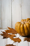 Pumkin and maple leaves Royalty Free Stock Image