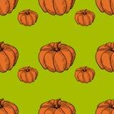 Pumkin Orange Pattern Stock Image