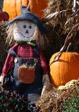 Pumkin patch Scarecrow Royalty Free Stock Photography