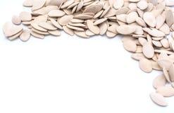 Pumkin seeds. Isolated on white background stock photo