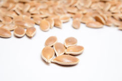 Pumkin seeds. Pile isolated on white stock photography