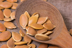 Pumkin seeds pile Stock Images