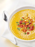 Pumkin soup with garnish in a bowl with a spoon Royalty Free Stock Photos