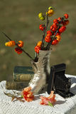Pumkin Squash & Old Fashioned Still Life. An old fashioned shoe, antique books & camera still life with pumpkin on a stick branches, Solanum aethiopicum, that royalty free stock photos
