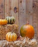 Pumkin and Squash on Straw bales Stock Photo