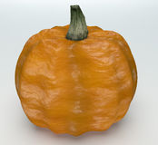 Pumkin on white background Royalty Free Stock Photography