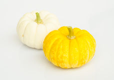 Pumkin. Royalty Free Stock Photo