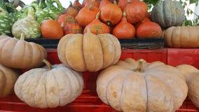 Pumkins на хеллоуин на стойке фермы около дороги стоковые фотографии rf