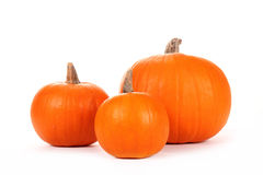 Pumkins Royalty Free Stock Photo