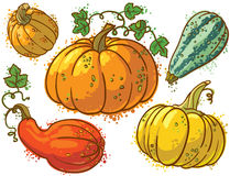 Pumkins Royalty Free Stock Image