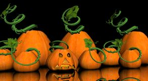 Pumkins Stock Images