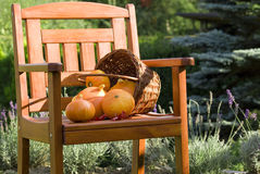 Pumkins on chair. Autumn still life with pumpkins on chair Stock Images