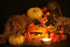 Pumkins de Halloween Photographie stock libre de droits