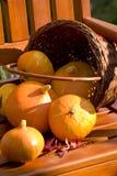 Pumkins en silla de madera Imagen de archivo libre de regalías